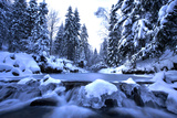Winter Mountain River- Beskid Mountains, Poland