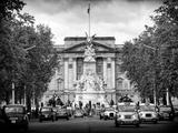 Buckingham Palace and Black Cabs - London - UK - England - United Kingdom - Europe