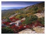 Atlantic coast from Cadillac Mountain, Acadia National Park, Maine