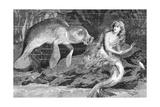 Illustration of Meeting between Manatee and Mermaid
