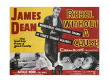 Warner Brothers Poster for the Film 'Rebel Without a Cause', 1955