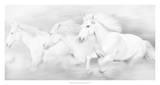All the White Horses