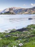 Seathrift Flowers in Front of Eilean Donan Castle and Loch Duich, Highlands, Scotland