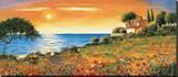 Sunlight Coast