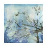 Moonlit Branches II