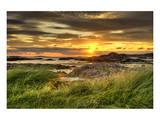 Fidden Farm Isle Mull Scotland