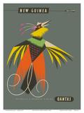 New Guinea - Raggiana Bird of Paradise