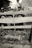 Unexploded Bomb in Gradisca D'Isonzo During WWI