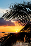 Sunset Landscape with a Yacht - Miami - Florida