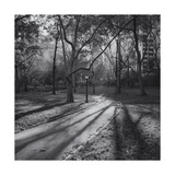 Central Park Path in Fall 2