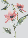 Garden Florals II