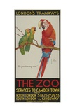 The Zoo, London County Council (Lc) Tramways Poster, 1932