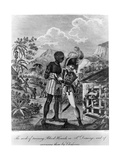 The Mode of Training Blood Hounds in St Domingo and of Exercising Them by Chasseurs, 1805