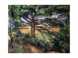 A Big Pine Tree Near Aix, 1895-1897