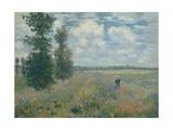 Poppy Fields Near Argenteuil, 1875