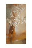 Misty Orchids I