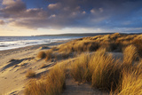 Windswept Sand Dunes on the Beach at Studland Bay, with Views Towards Old Harry Rocks, Dorset