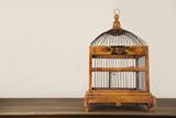 Bird Cage on Wooden Shelf