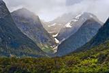 New Zealand, South Island, Fiordland National Park, Milford Sound