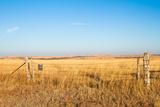 Prairie Blessing