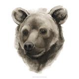 Western Animal Study I
