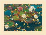Lily Pad I