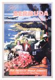 Bermuda by Clipper