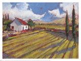 Pastoral Fields II