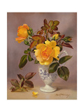 Orange Roses in a Blue and White Jug