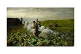 The Pumpkin Harvest, 1897