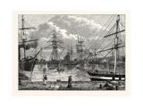 The Edinburgh Dock Leith