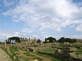 Italy, Paestum, Temple of Athena or Ceres