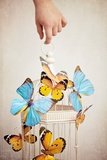 Childs Hand with Birdcage and Butterflies