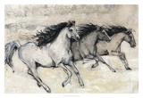 Horses in Motion II