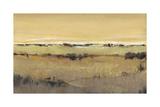 Golden Pasture II