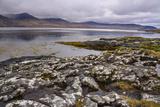 Loch Na Keal, Near Kellan, Isle of Mull, Inner Hebrides, Argyll and Bute, Scotland, United Kingdom