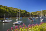 Solva Harbour, Pembrokeshire, Wales, United Kingdom