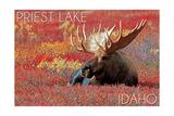 Priest Lake, Idaho - Bull Moose in Flowers
