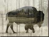 Camouflage Animals - Bison