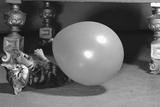 Surprised kitten 1958