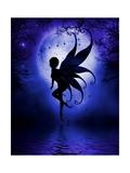 Indigo Fairy