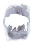 Watercolor Gray Buffalo