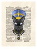 Cat Nefertiti