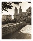 Central Park Bridges 1