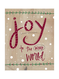 Joy to the Whole World