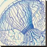 Vintage Jellyfish II