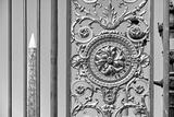 Paris Focus - Close-up on a Portal
