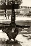 Paris Focus - Public Bench