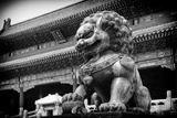 China 10MKm2 Collection - Bronze Chinese Lion in Forbidden City