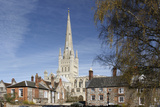 Norwich Cathedral, Norfolk, 2010